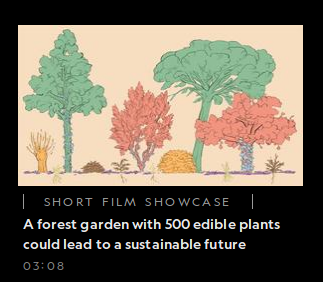 National geographic short film feature - a forest garden with over 500 edible plants could lead to a sustainable future.