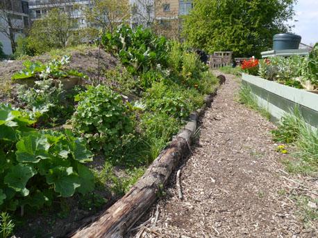 garden hugel