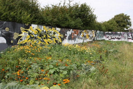 polyculture beds and graffiti art at The Green Backyard