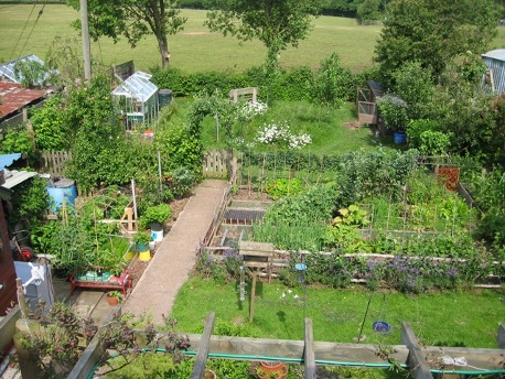 Station Road Permaculture Garden Permaculture Association