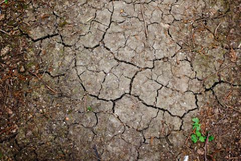 Dry, cracked soil. Photo: Ricky Thakrar shared under CC BY-NC-ND 2.0